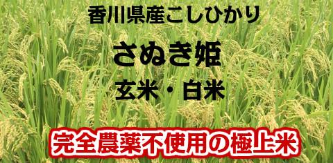 国産 こしひかり 完全農薬不使用
